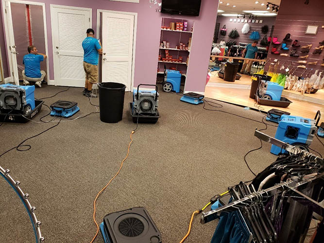 water damage restoration at retail store in florida