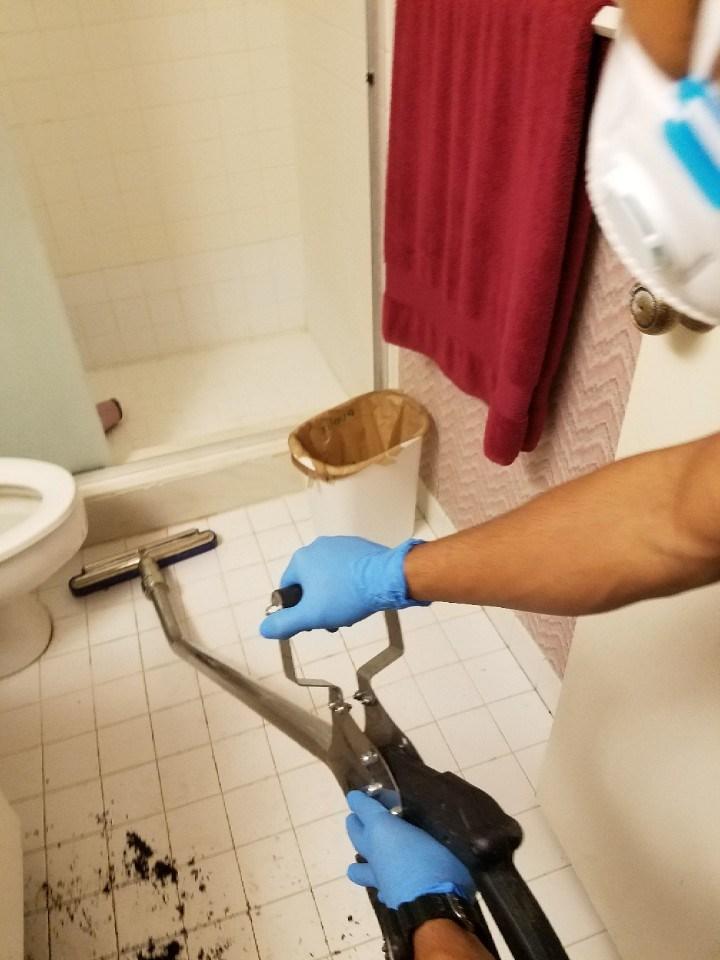 water damage repair in miami home