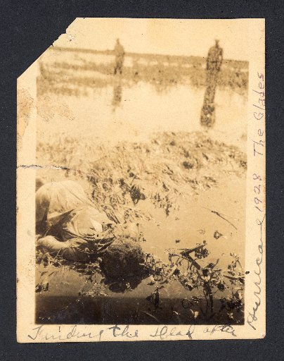 dead body in marshland after 1928 hurricane flooding