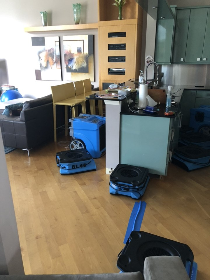 water damage restoration in a coral springs florida home