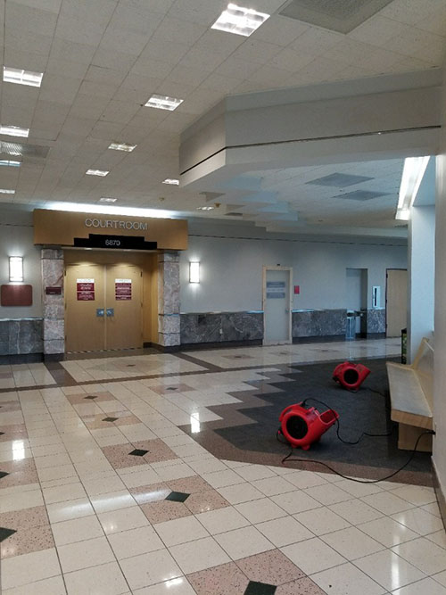 water damage restoration in florida government building