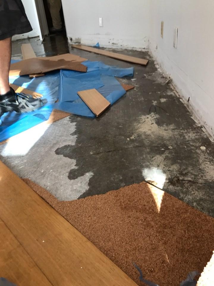 water damage repair in weston florida
