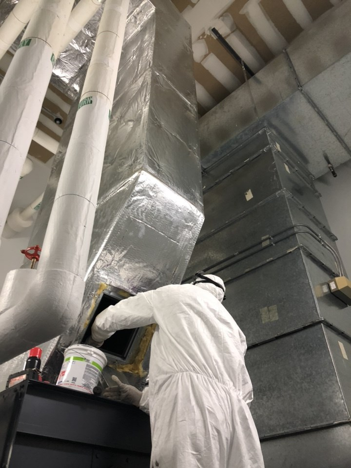 Mold Removal Company Miromar Lakes FL